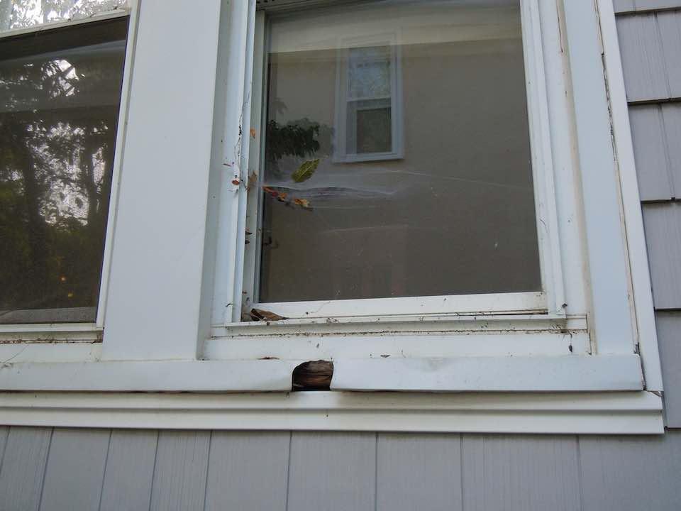 Cheap uPVC windows - rotten after a few years.